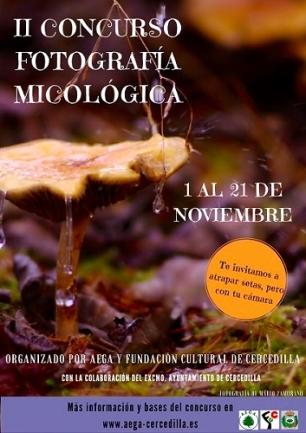 ii-concurso-de-fotografia-micologica-pq